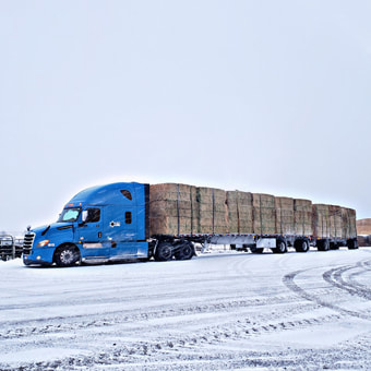 GLS Carriers - Flatbed freight shipping solutions - blue truck with hay loaded on flatbeds